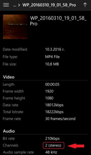Windows Camera Stereo audio