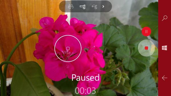 windows camera 10 video pause