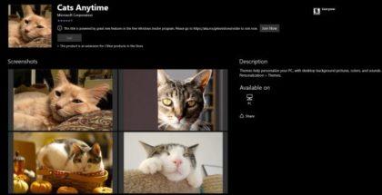 themes cat