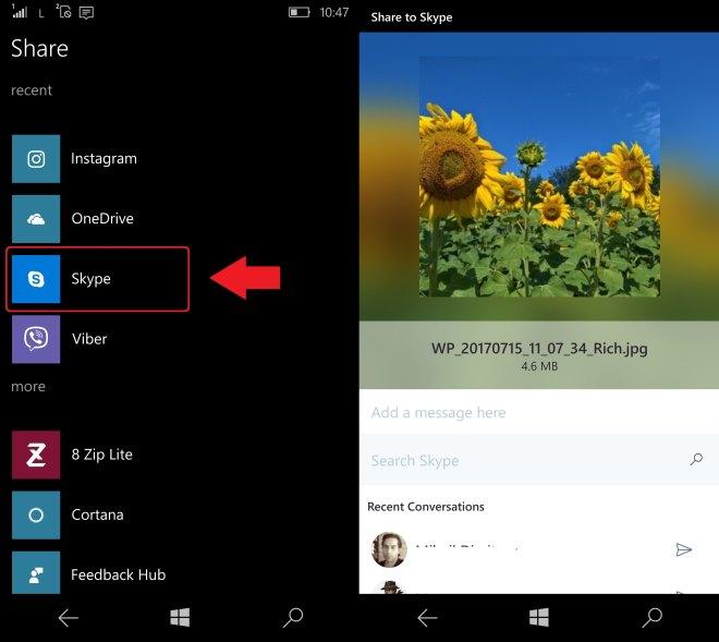 Skype Share UI