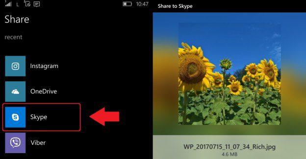 Skype Share