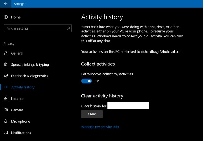 Activity History page under Settings → Privacy.